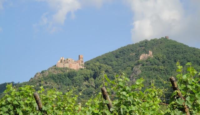 Rota do vinho em Alsacia
