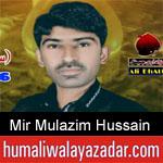 https://humaliwalaazadar.blogspot.com/2019/08/mir-mulazim-hussain-talpur-nohay-2020.html
