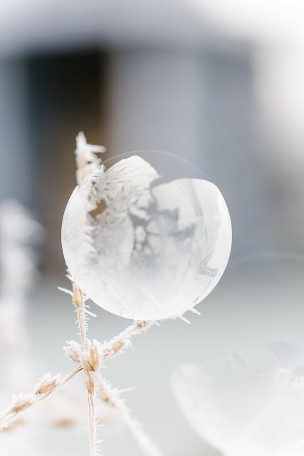 Vereiste Seifenblasen fotografieren, Pomponetti