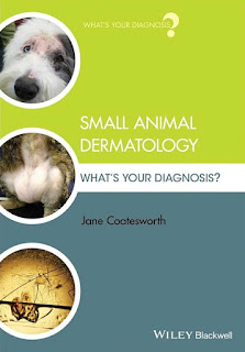 Small Animal Dermatology, What's Your Diagnosis