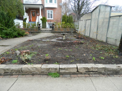 Summerhill Toronto New Front Perennial Garden Makeover Before by Paul Jung Gardening Services--a Toronto Gardening Services Company