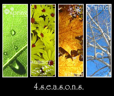 Xuân, hạ, thu và đông...