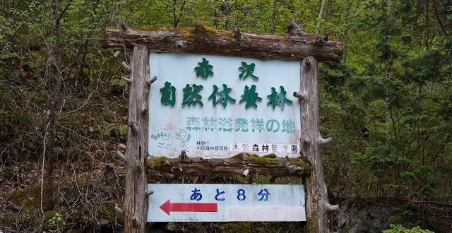 赤沢休養林標識看板