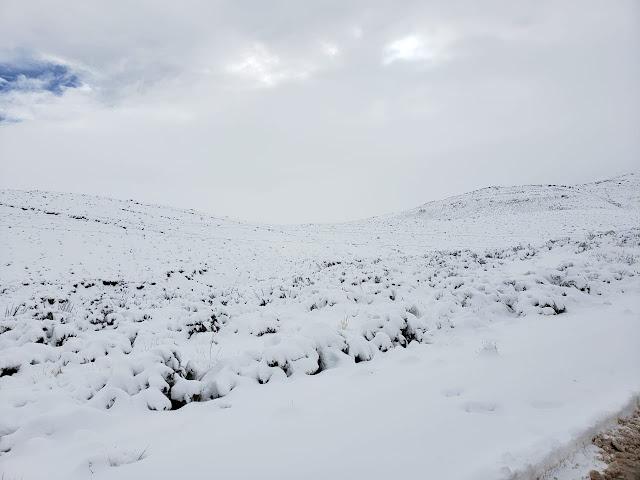 Alles tief verschneit seit gestern