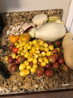 Countertop full of tomatoes, an assortment of squash, and garlic