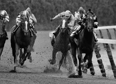 horse racing, racing tips, winning racing tips