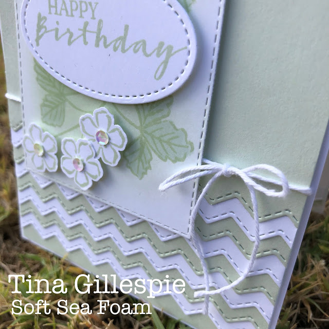 scissorspapercard, Stampin' Up!, Colour Creations, Sweet Strawberry Bundle, Basic Borders Dies