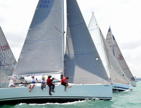 http://asianyachting.com/news/TOTGR16/Top_Of_The_Gulf_2016_AY_Race_Report_4.htm