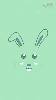 Bunny The Rabbit A