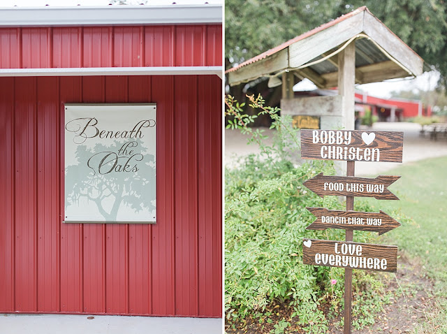 Bay City Texas Wedding Photographer, Beneath the Oaks, Texas Wedding