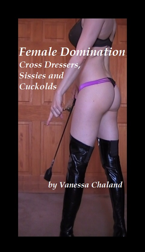Theme wi bdsm spanking domination recommend you look