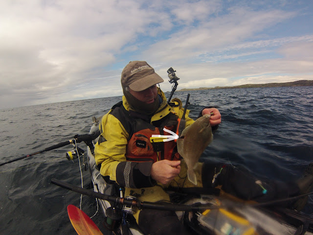 How Underwater Fishing Cameras Can Save The Day And Help Catch Fish!