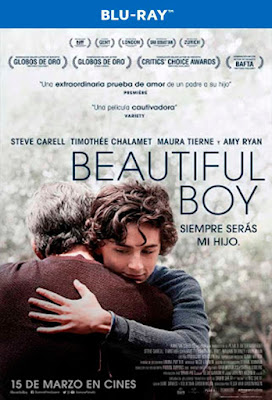 Beautiful Boy |2018| |BD25| |Latino|