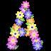 Abecedario con Margaritas de Colores. Colored Daisies Alphabet.