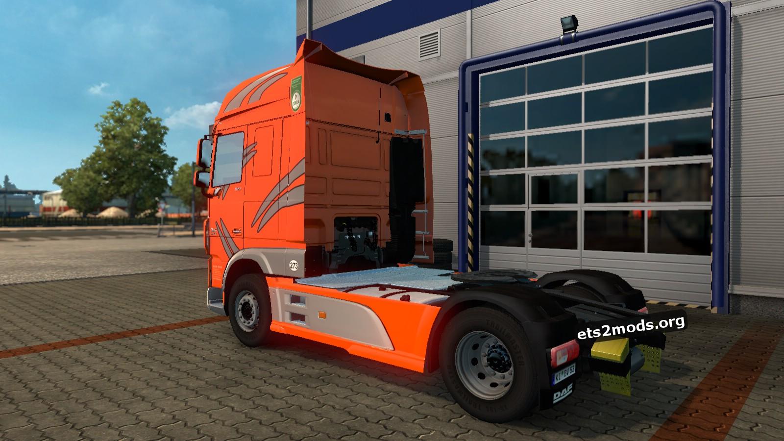 Sachs Trans Skin for DAF Euro 6
