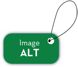 How to add Title Tag and alt tag to images in blogger for making them SEO rich