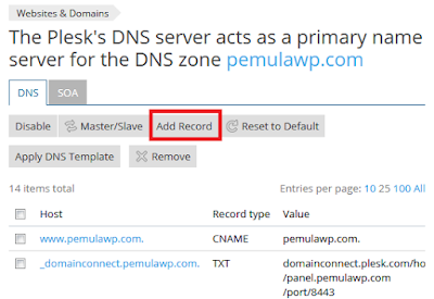 Cara Setting Private Nameserver di Plesk