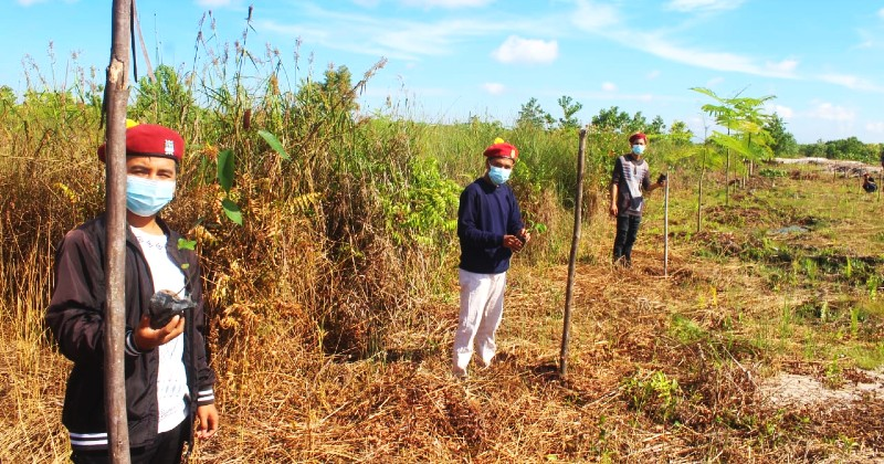 Gerakan Tanam Pohon:  Aksi Nyata KSR PMKRI Regio VIII