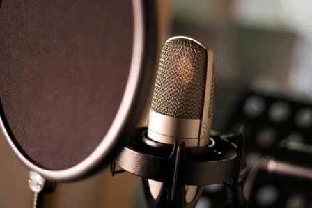 Professional voice actor - vinyl record holder - kallax records - records covers
