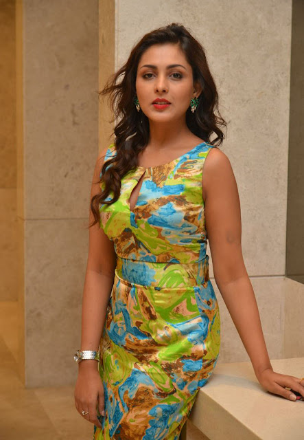 Tollywood Celebrities Madhu Shalini Latest Photos
