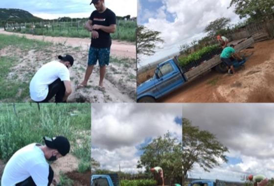 Secretário de Meio Ambiente fala sobre projeto de arborização na cidade de Cacimba de Areia