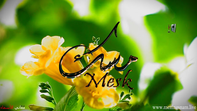 معنى اسم مسك وصفات حاملة و حامل هذا الاسم Mesk