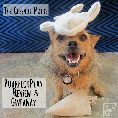 The Chesnut Mutts Purrfect Play Review and Giveaway