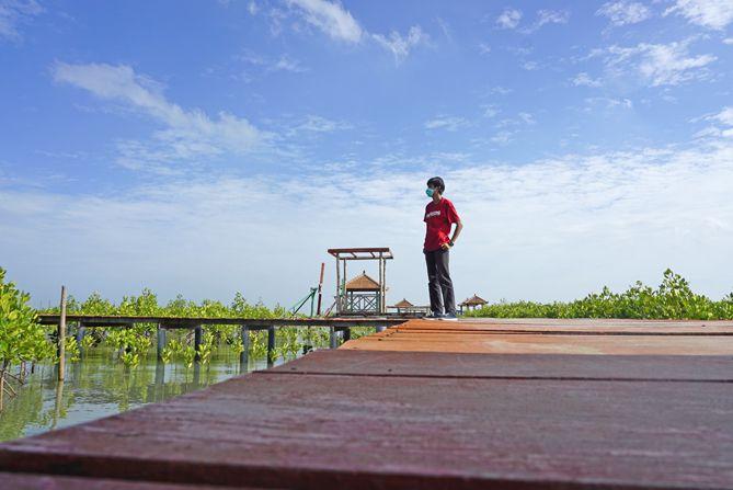 Berkunjung ke mangrove saat pagi hari