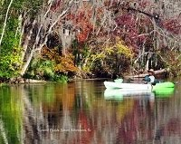 The lazy Wekiva River