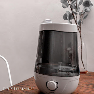 humidifier dr browns