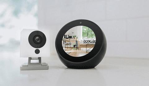 The Best Wyze Camera Alexa   ( August 2019 )