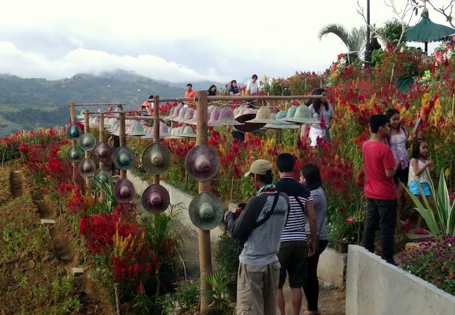 Sirao Flower Park Cebu