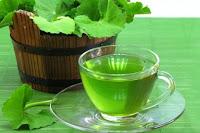 Gotu Kola Çayı