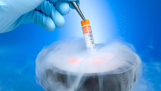 juiz autoriza mulher receber ovulos irma