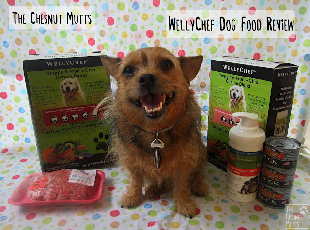 The Chesnut Mutts WellyChef Dog Food Review