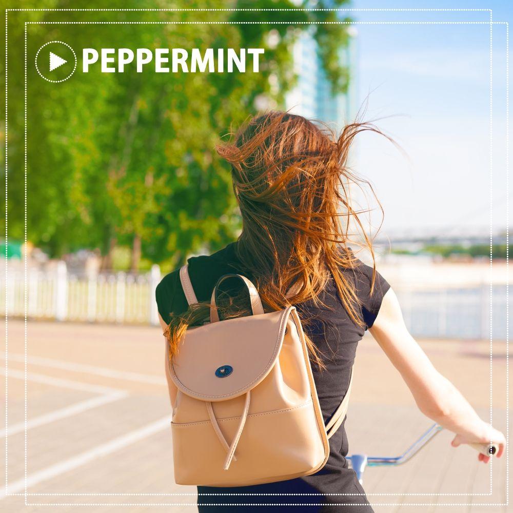 peppermint – 내게 내게 너만큼 – Single