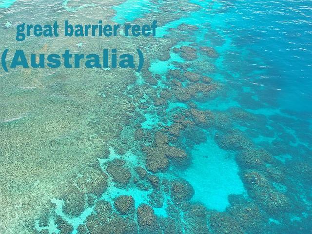 great barrier reef kiya hai? /ग्रेट  बैरियर रीफ क्या  है ?/तथा किस महासागर में स्तिथ है?