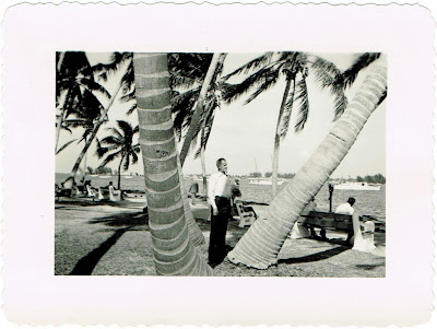 standing by the palm trees in Miami Florida