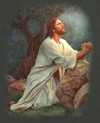 Querido Dios, te agradezco por este día.  Te agradezco por poder ver y oír esta mañana.  Soy bendito porque eres un Dios comprensivo y de perdón.