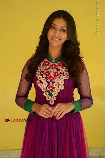 Actress Pooja Jhaveri Latest Stills in Purple Salwar Kameezt at Dwaraka Success Meet  0044.JPG
