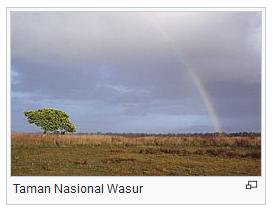 Taman Nasional Wasur ini terletak di Kabupaten Merauke papua indonesia wisataarea.com