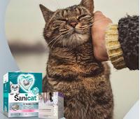 Logo Sanicat concorso ''San Valentino'': vinci gratis candele aromatiche SaniLove e lettiera agglomerante Strong Clumps