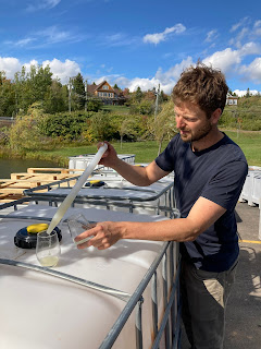 Zach Everett : l'art du winemaking.