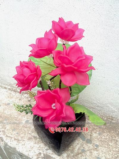 Hoa da pha le o Minh Khai