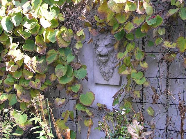 pnącze na kracie na murze, kamienna ozdoba ogrodowa