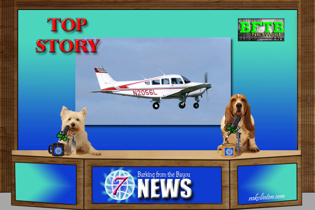 BFTB NETWoof News reports on Flying Fur Animal Rescue