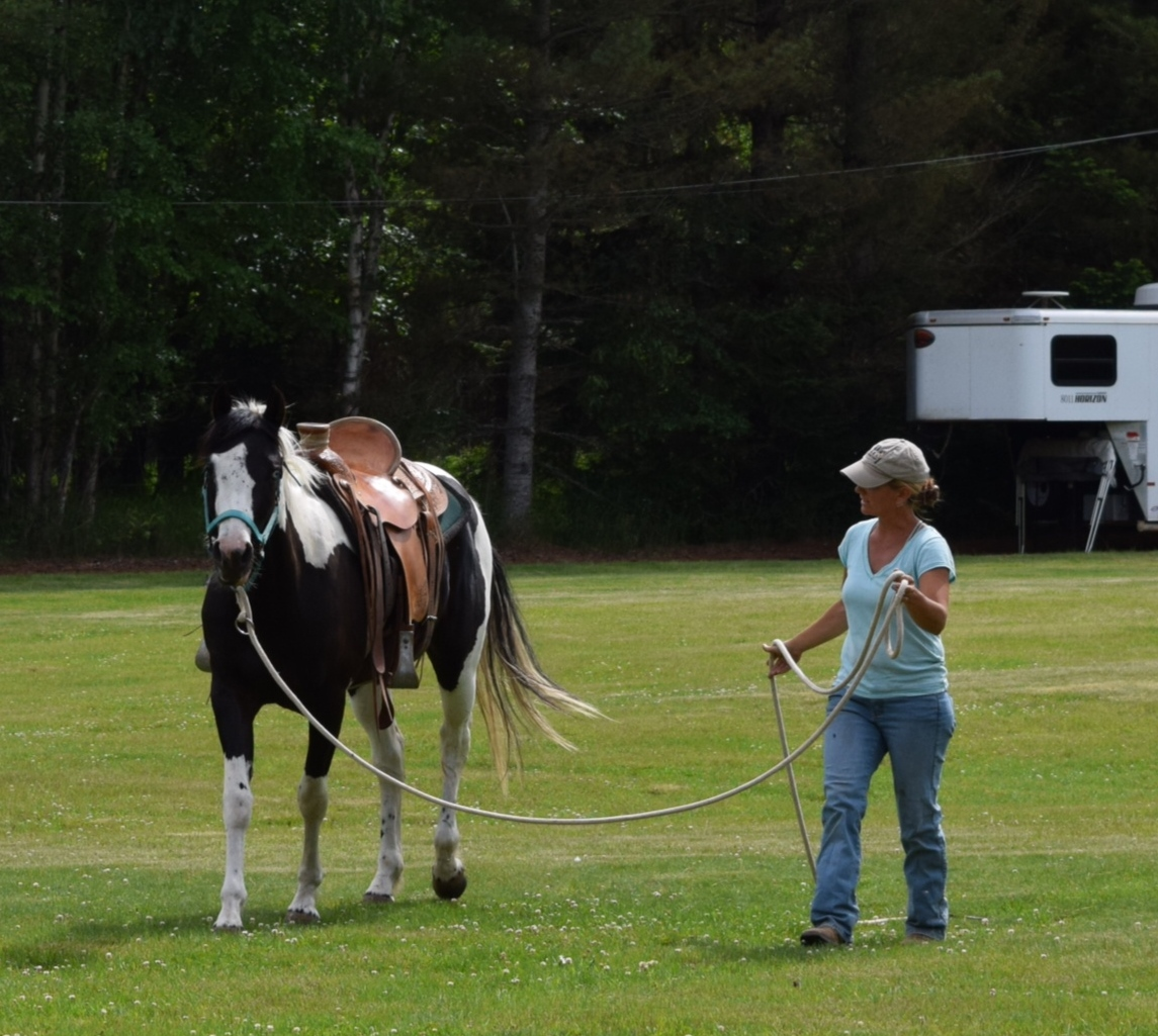 Groundwork and Horsemanship with Samantha Harvey