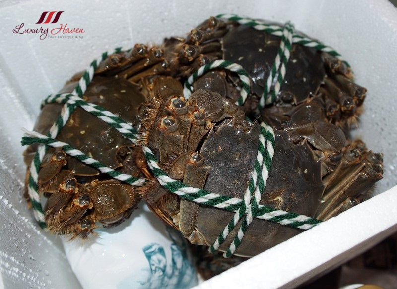singapore imports taihu hairy crabs review