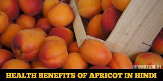 Apricot Health Benefits in Hindi