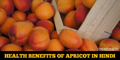 खुबानी के फायदे : HEALTH BENEFITS OF APRICOT IN HINDI